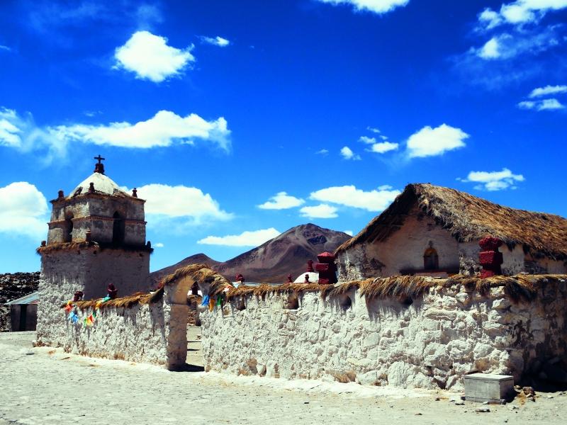 chileparinocota3