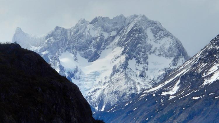 patagoniahorn