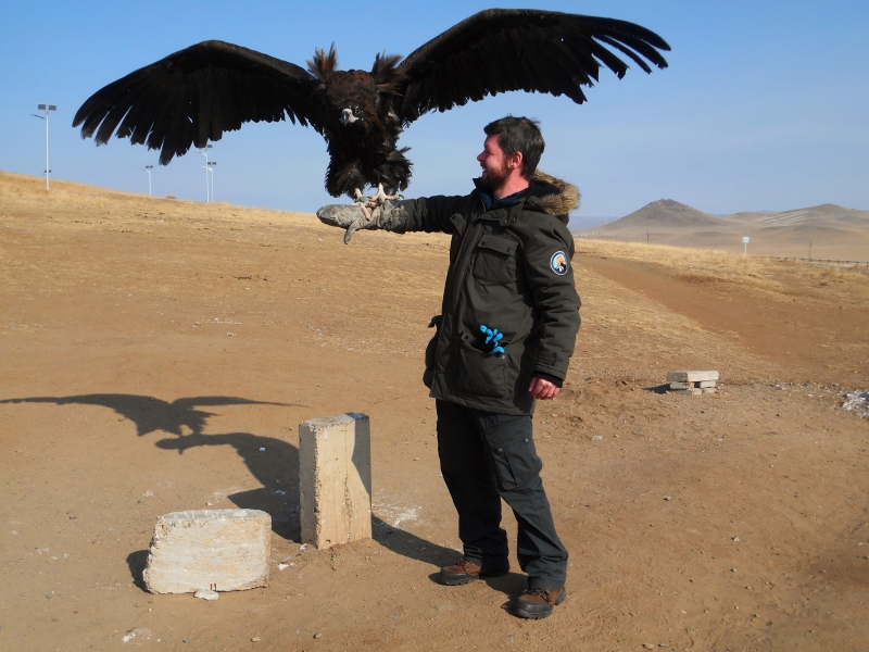mongoliabird